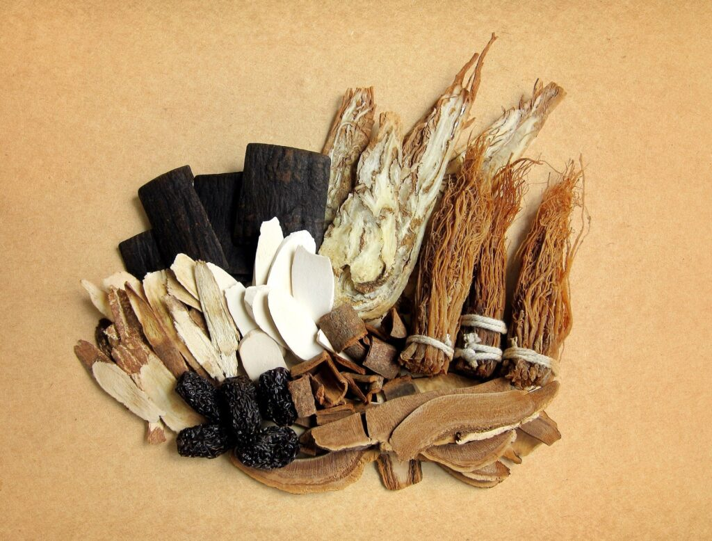 Photo of Chinese Herbal Medicines